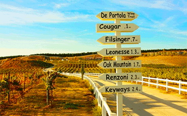 California taxi transportation in wine country
