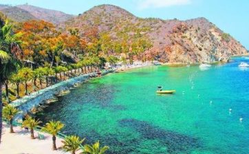 Catalina-Island-Day-Trip