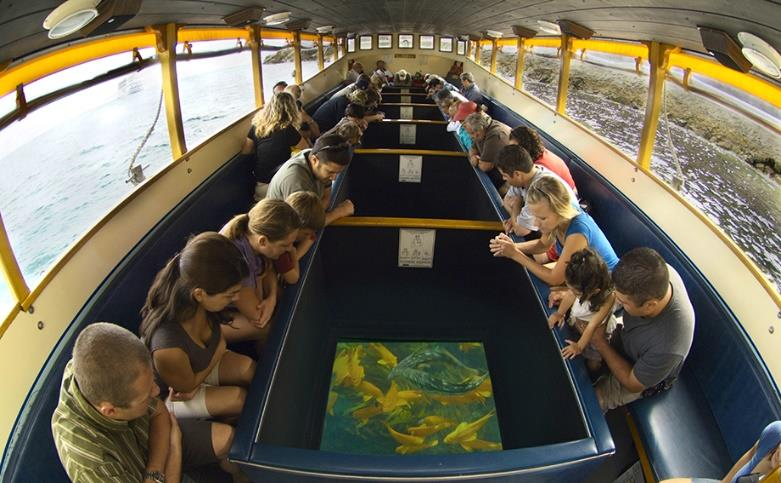 Glass Bottom Boat Voyage